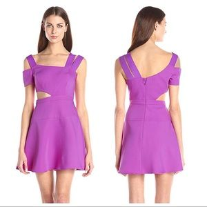 NEW BCBGMaxAzria Kiki Magenta Cutout Dress